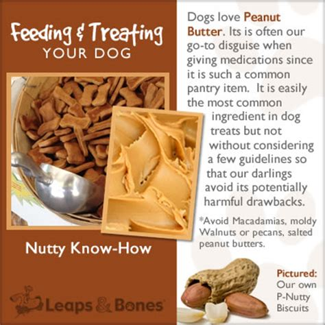 is butter bad for dogs nutty how leaps bones