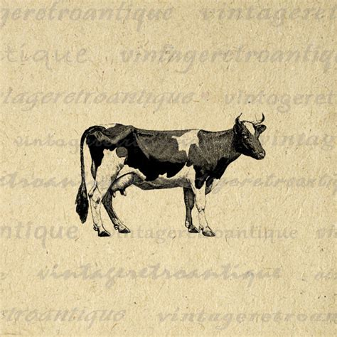 vintage printable animal digital graphic cow printable farm animal by