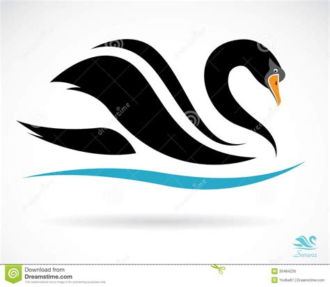 vector image of a swan stock photo image 30484230