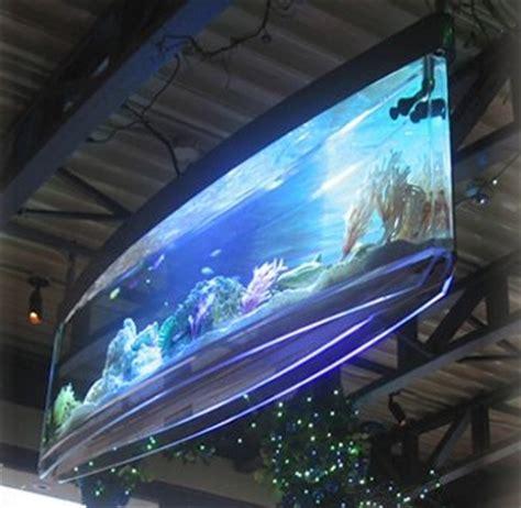 TheBioguide: 10 Creative and Unusual Aquariums