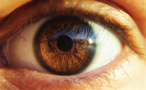 She Eye No 2 human eye no 2 by krajes1993 on deviantart