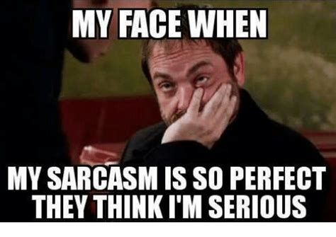 Memes Sarcastic - my face when my sarcasm is so perfect they thinki m