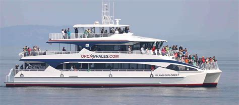 seattle whale watching boat tours orca whale watching in the san juan islands island