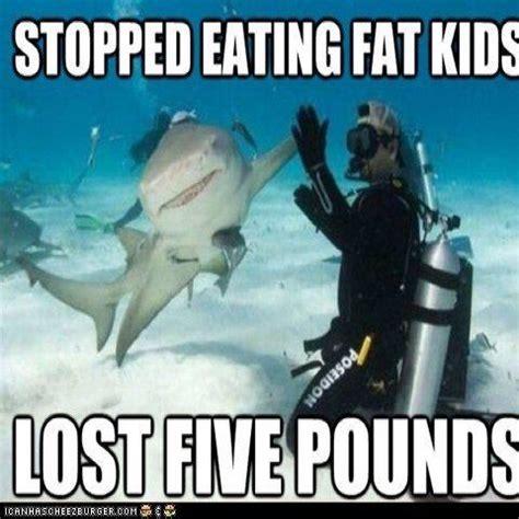 Shark Week Meme - exploring your apk with classyshark androidpub