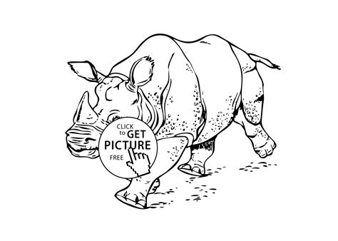 rhinoceros real animals coloring pages for kids