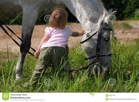 girl with horse head little girl and big horse s head stock photo image 5627724