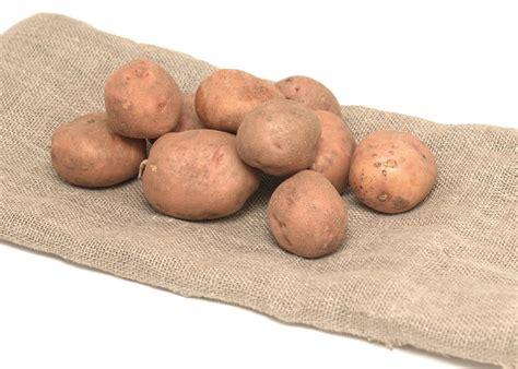whole grains high in potassium potassium rich foods list of foods high in potassium