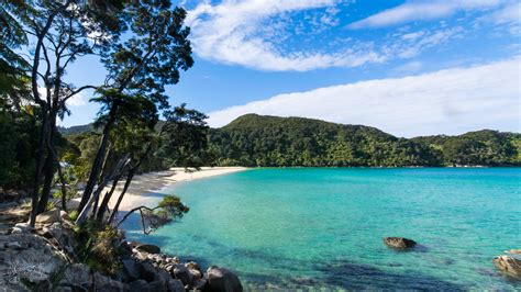 abel tasman coast track shoesyourpath