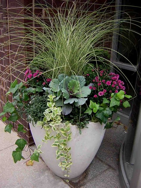 container gardening flowers fabulous fall flower containers
