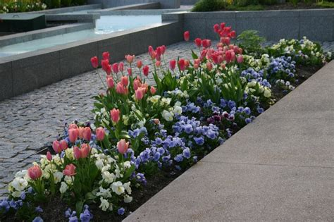 long narrow bed design flower bed palette pinterest beds bed designs and front of houses