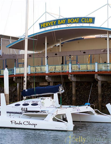 boat club hervey bay specials hervey bay whale watching