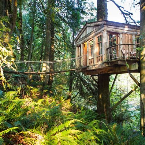 coolest treehouse in the world the world s 10 coolest treehouse hotels 171 cbs new york