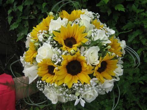 fiori ferrara fiori ferrara flora