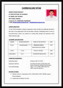 resume for application exles document