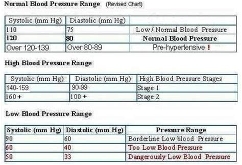 normal blood pressure anatomy system human anatomy diagram and chart images human anatomy