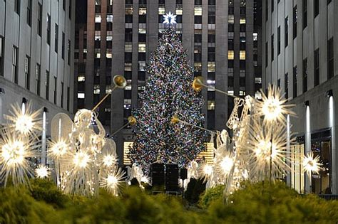 the 10 most amazing christmas trees within the d j