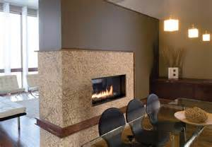 Narrow Gas Fireplace Insert » Home Design 2017
