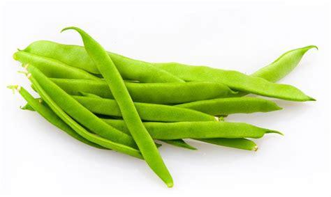 Imagenes Porotos Verdes | mi libro de recetas de cocina quot pasi 243 n por cocinar
