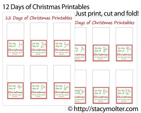 12 days of christmas gifts ideas for him 12 days of