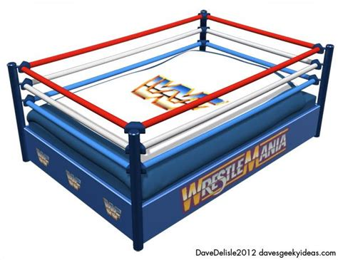 Wrestling Bed Wwf Wwe Dave Delisle 2012 Things For Our Dream House