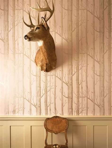 Forest Wall Murals Wallpaper woods 103 5022 whimsical cole amp son