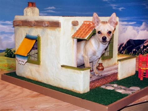 chihuahua dog house 27 innovative doghouse designs diy