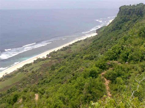 happier than a billionaire an acre in paradise volume 4 books exclusive bali cliff land for sale cliff front lands homes