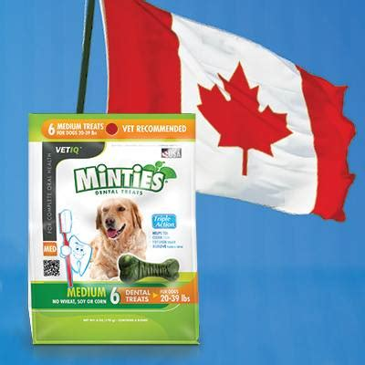 vet recommended dental chews minties vet recommended dental treats for dogs now available at walmart canada prlog