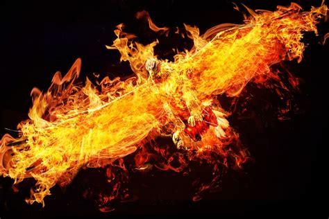Flames Black Hitam free photo photoshop adler free image