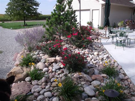 Landscape River Rock Beautiful Back Yard On Friendly Backyard