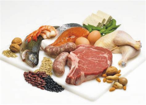 protein in how many grams of protein do i need per day fitness exchange