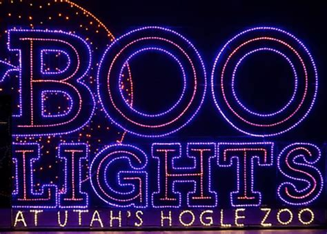hogle zoo boo lights boolights at utah s hogle zoo out and about salt