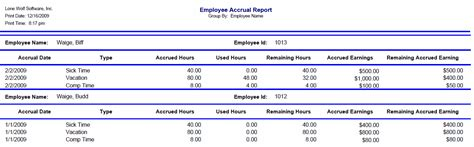 accrual report template employee accruals
