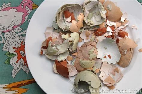 Eggshells In Garden by Just Reuse Those Egg Shells Go Gingham