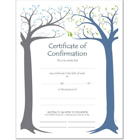 confirmation certificates templates cycle certificates bar and bat mitzvah