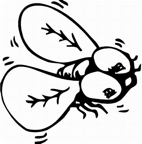 bed bugs color free printable bug coloring pages for kids animal place