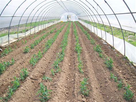 vendita alimenti biologici vendita alimenti biologici a torino piemonte valle d aosta