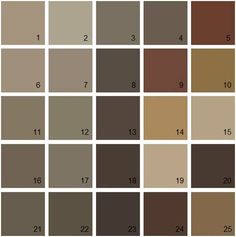 best 25 benjamin brown ideas on benjamin benjamin colors and