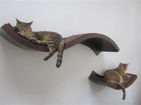 shelves for cats nifty curvy shelves doesn t ikea something like this cat habitat for new house