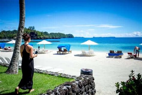 palau dive packages palau dive packages starting from 1 430 per person