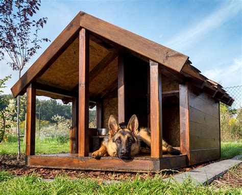 happy dog house guide to the best indoor and outdoor dog house heater options