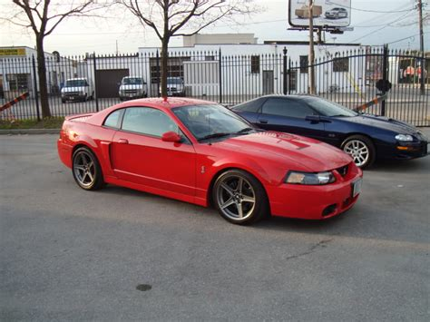 2004 mustang cobra for sale 2004 ford mustang svt cobra 29000 canadian mustang