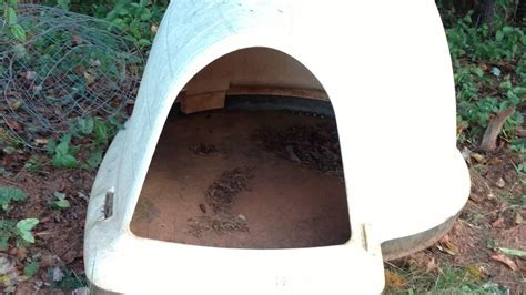 used dog houses for sale dog house igloo for sale classifieds
