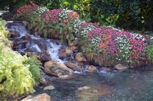 Flower Gardens In Florida Sea World Orlando Florida Flower Garden