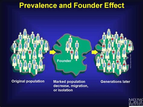 36 prevalence and founder effect