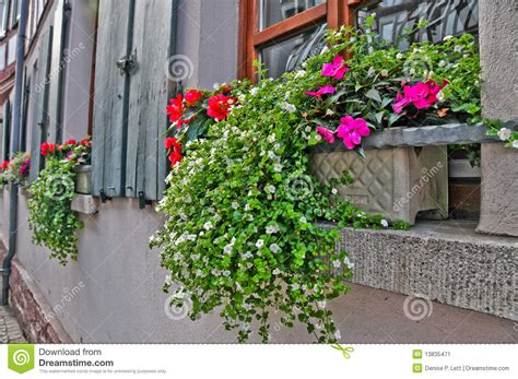 window sill flower boxes flower box on window sill in europe stock image