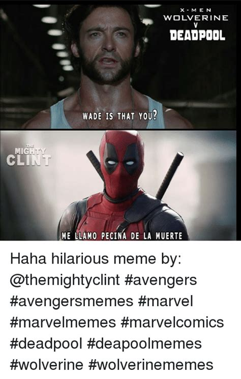 Hillarious Memes - mig m e wolverine deadpool wade is that you me llamo