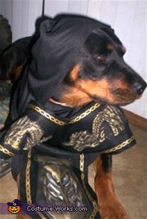 dog  ninja costume