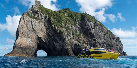 rock the boat tour nz hole in the rock bay of islands dolphin cruise
