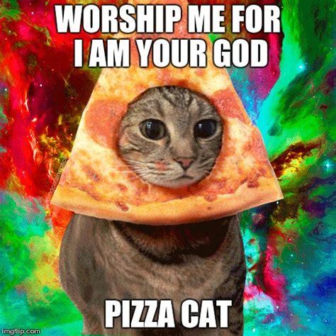 Pizza Meme - pizza cat meme www imgkid com the image kid has it